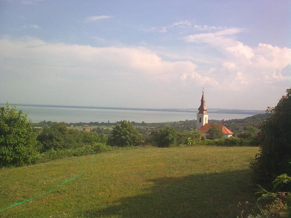 Vidékről költöztettem, az ügyfelem udvaráról készült a kép. A háttérben a Balaton van.