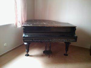 Zongora.